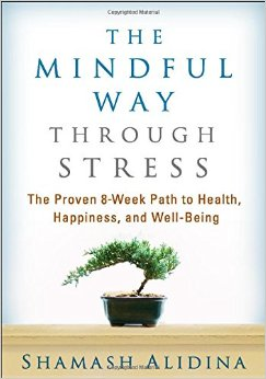 mindful way through stress